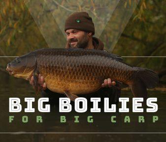Big Boilies for Big Carp