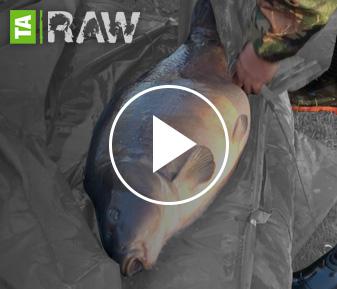 TA | RAW Scott Lloyd Vlog – 005