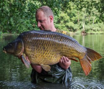 Sam Verstreken – Belgian Beast